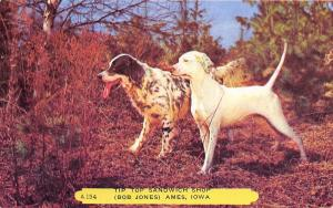 Ames IA England Foxhound & Spaniel Hunting Dogs~Top Sandwich Shop 1940s Rembrant