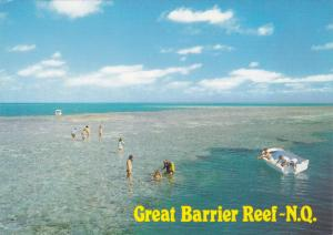 The Great Barrier Reef, Glass Bottom Boat, NORTH QUEENLAND, Queenland, Austra...