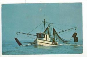 Shrimp Boat, Hilton Head, South Carolina, pU-1972