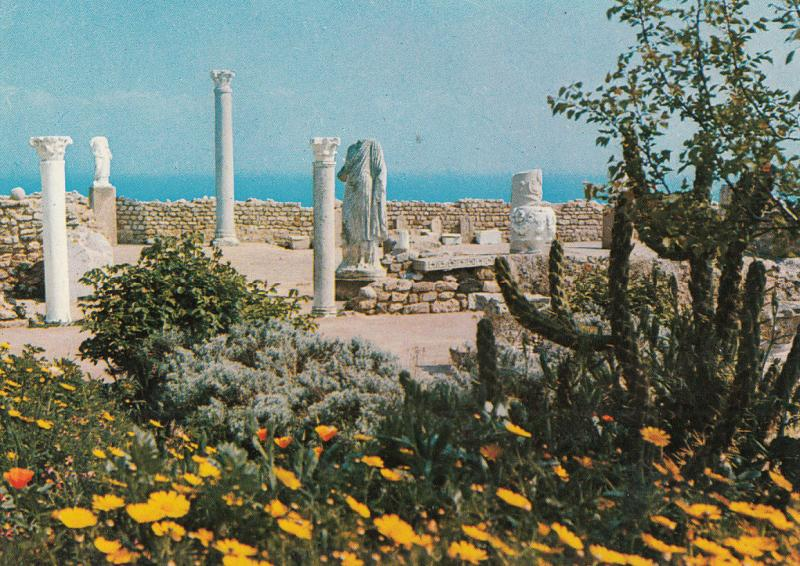 CARTHAGE TUNISIE ANTIQUARIUM