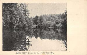 Hill New Hampshire Brook View Waterfront Antique Postcard K93844