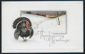 Thanksgiving Greetings Turkey & Winter Scene Unused c1910s