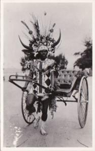 South Africa Durban Rickshaw and Native Driver Real Photo