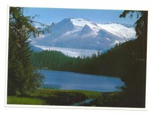 Alaska Mendenhall Glacier Juneau Postcard