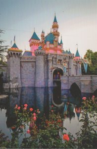 DISNEYLAND CASTLE AND ROSES - 651