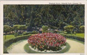 Hemlock Grove Idlewild Park Ligonier Pennsylvania