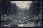 Wissahickon Creek,Fairmont Park,Philadelhpia,PA BIN