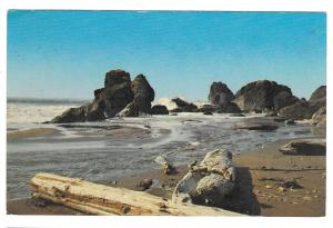 OR Boardman State Park Oregon Coast  North of Brookings Vtg Postcard