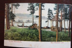 In the Adirondacks Blue Mountain Lake - The Rochester News Company N.Y. U.S.A.