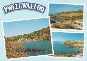 Pwllgwaelod Dinas Welsh Birds Eye 1980s Postcard