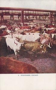 Cattle At The Union Stock Yards Chicago Illinois