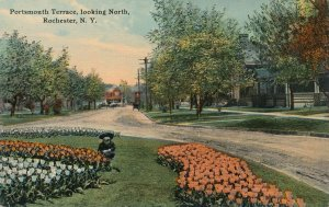 Tulip Beds Looking North at Portsmouth Terrace - Rochester NY, New York - DB