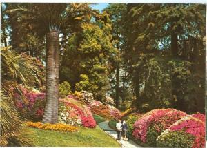 Italy, Lago di Como, Villa Carlotta, Il Parco, unused Postcard