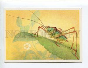 271916 USSR Aristov isoimon riabovi 1990 year card