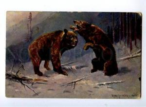 156966 Winter HUNT Brown BEAR by MULLER vintage PC