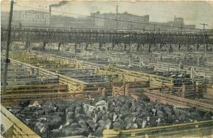 IL, Chicago, Illinois, Union Stock Yards, Postmark 1910