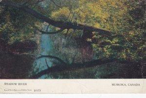 MUSKOKA , Ontario , Canada , 1905 ; Shadow River