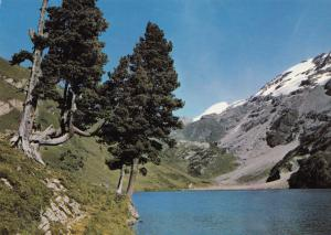 Switzerland, Suisse, Engstlensee, Titlis, unused Postcard