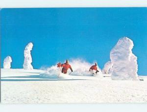 Unused Pre-1980 Skiing BIG MOUNTAIN SKI RESORT Whitefish Montana MT ho8307