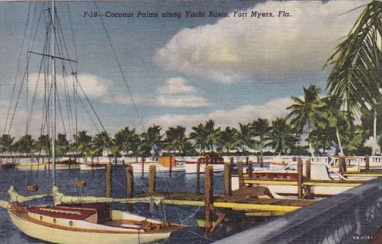 Coconut Palms Along Yacht Basin Fort Myers Florida 1955