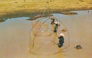 Thailand Thai Fishing
