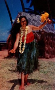 Hawaii Beautiful Hula Dancer