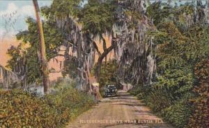 Florida Eustis Picturesque Drive Curteich