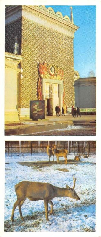BR57455 the nature protection pavillion preservation of flo the USSR    Russia