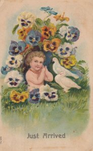 Baby & flowers , JUST ARRIVED , 1909
