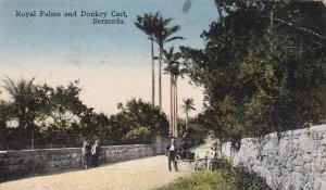 Bermuda Royal Palms and Donkey Cart 1937