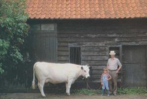 South Elmham Hall Harleston Norfolk Suffolk White Cow Farm Farming Postcard
