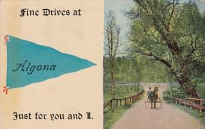 Pennant Series Algona Iowa 1914