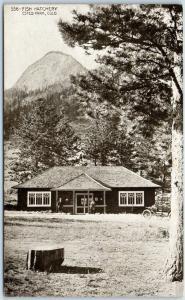 Vintage Estes Park, Colorado Postcard FISH HATCHERY RMNP HHT c1920s Unused
