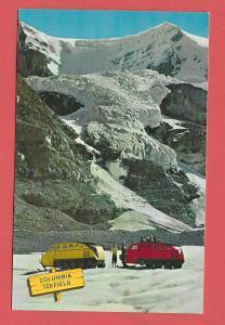 Columbia Icefield. Canadian Rockies