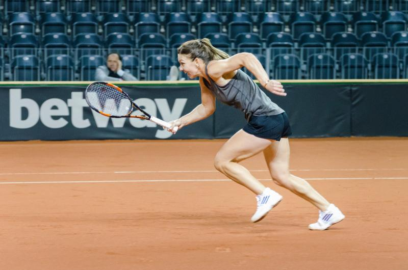 Simona Halep Fed Cup 2016 tennis action tenis sport unsigned photo 10 x 15 cm