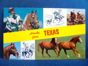 Postcard TX Texas Howdy from Texas Multiview Horses