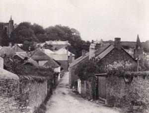 Slapton Devon Village Scene Real Photo Postcard