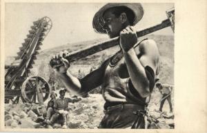 israel, Chalutzim building Road, Jewish Immigrants (1930s) Judaica Postcard