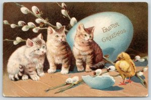 Easter Cats~Striped Kittens Watch Chick Hatch~Blue Egg~Pussy Willows~Emboss~1905