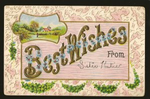 Postmarked 1910 Benson Nebr Best Wishes From Embossed Color Postcard