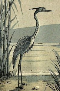 1880's The Hale & Kilburn Mfg. Co. Unique Odorless Commode Lake Crane Moon P147
