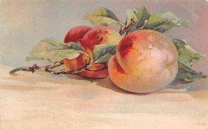 Still Photograph Postcard Peaches 1911
