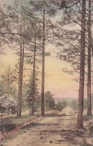 Vermont Avenue Southern Pines North Carolina Handcolored Albertype 1928