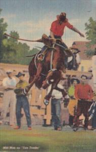 Rodeo Milt Moe On Tea Trader Horses Curteich