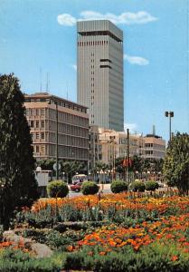 Tunisia - Tunis - Avenue Bourguiba flowers