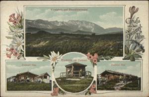Gruss von der Zwiesel-Alm Austria Multi-View c1910 Postcard