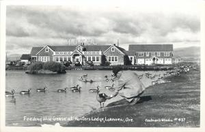 Lakeview OR~Man Feeds Wild Geese~Hunters Lodge Hotel~Real Photo Postcard 1950