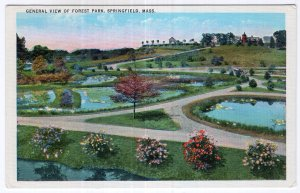 Springfield, Mass, General View Of Forest Park