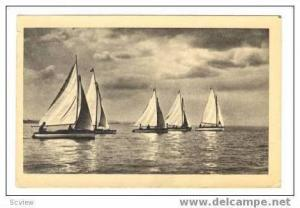 BALATONROL, Hungary, PU 1920-40s, Sailboat race
