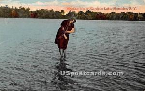 Shandelee Lake Shandelee NY 1915